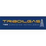 Triboilgas-01